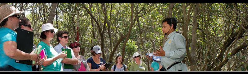 Wetland Education and Training Workshop - Wetland legislation: when are they applicable and where?